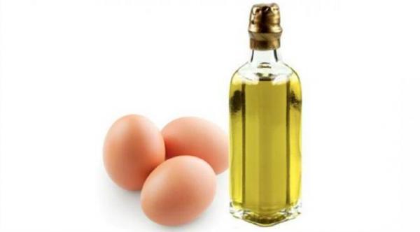Hilangkan Rambut Bercabang Dengan Telur Dan Minyak Zaitun